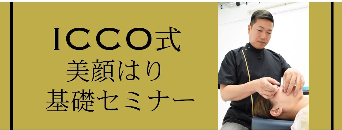 ICCO式画像